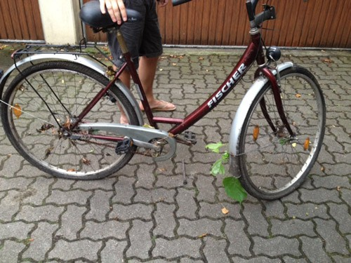 Was aus meinem Fahrrad wurde, das vier Jahre in der Hecke