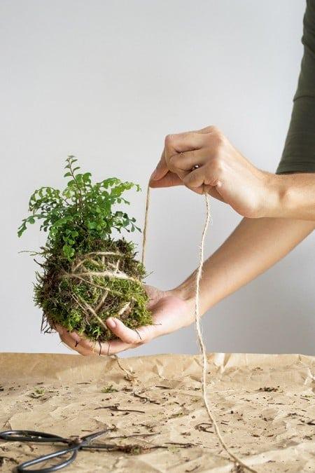 Wohnen in Gruen vier DIY