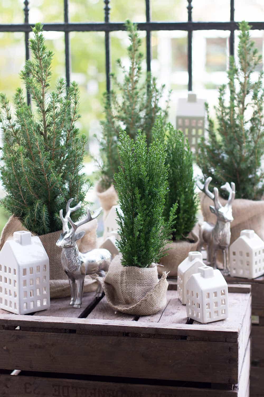 ein groer rabatt rabatz fr geschenke schne ideen frs kinderzimmer und die vor weihnachtszeit ein buch zum trinken - Fantastisch Besondere Kinderzimmer Bume