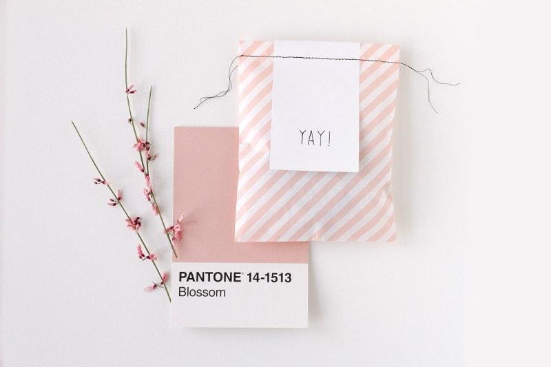 Verpackung Patone