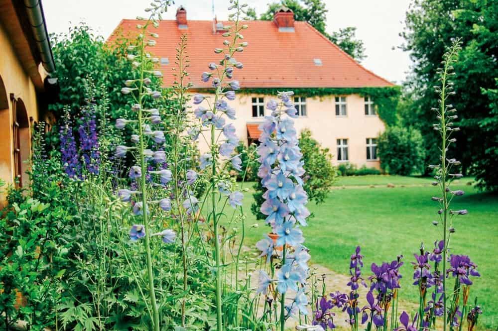 Gutshof in grünem Garten Gut Wendgräben